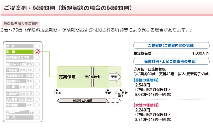 日本生命《みらいのカタチ》定期保険の保障内容