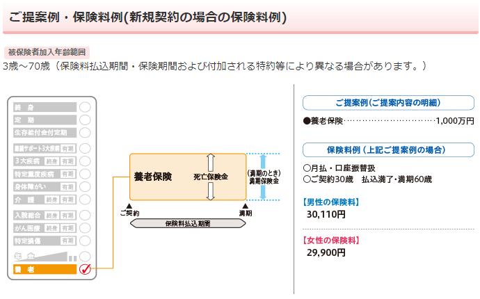 日本生命《みらいのカタチ》養老保険の保障内容